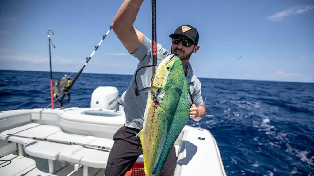 Man holds a fishing gaff with a mahi-mahi tuna
