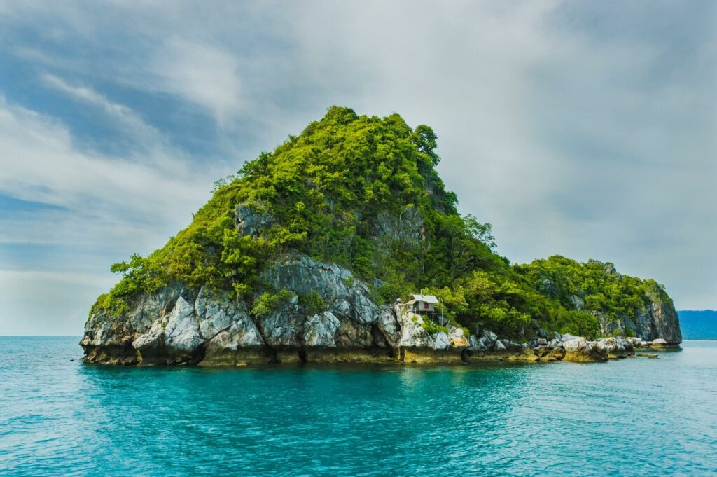 Small island covered with trees in the ocean