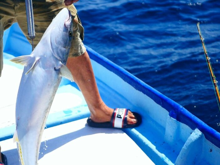 Man gaffs a fish on a fishing boat