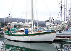White Westsail 32 cruiser in a marina