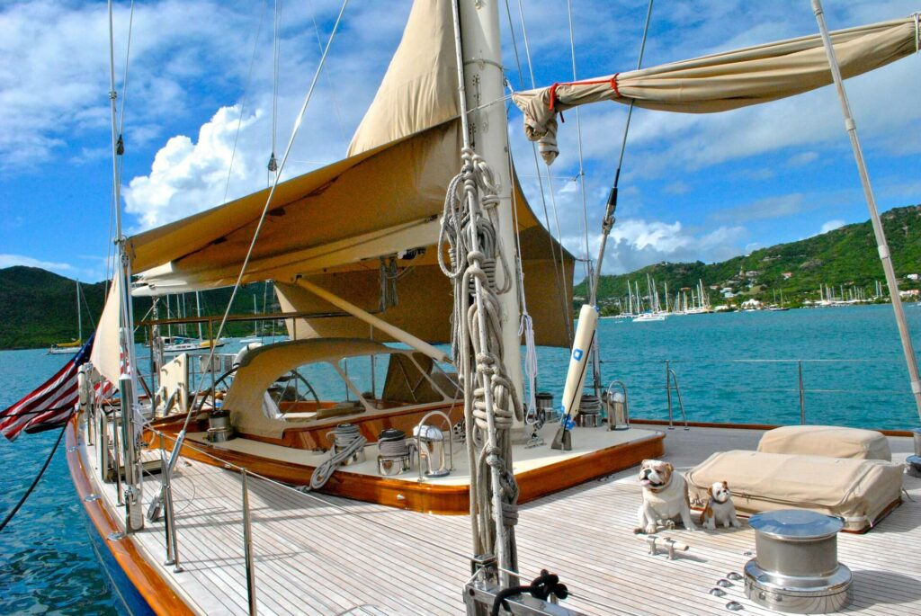 Bulldog sitting on the deck of a sailboat in Antigua and Barbuda