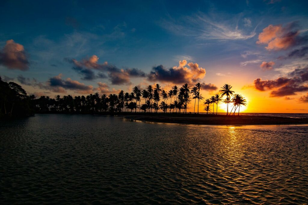 A bright orange sunset behind a palm-tree lined coast in Trinidad and Tobago