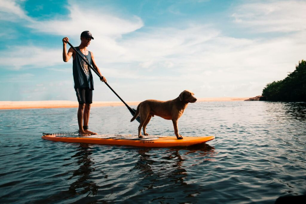 A man and his dog stand-up paddle boarding in the ocean